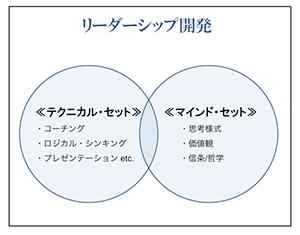 リーダーシップ開発 フレームワークの図